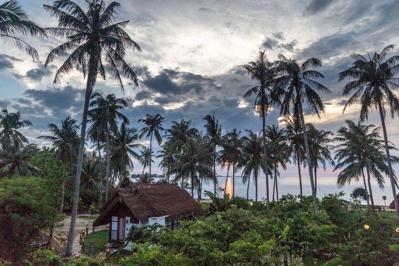 Karimunjawa INDONESIA Beach Tropical Paradise Karimunjawa