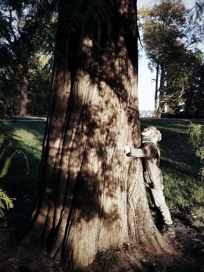 Old friend... Tree Real People One Person Day Outdoors People Childhood Child One Child Hugging A Tree Hug Enjoy The New Normal Beauty In Nature Light And Shadow Shadowplay Autumn Playing Outside Finding New Frontiers Adapted To The City TCPM