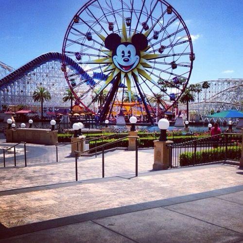 Springbreak2014 Disneyland