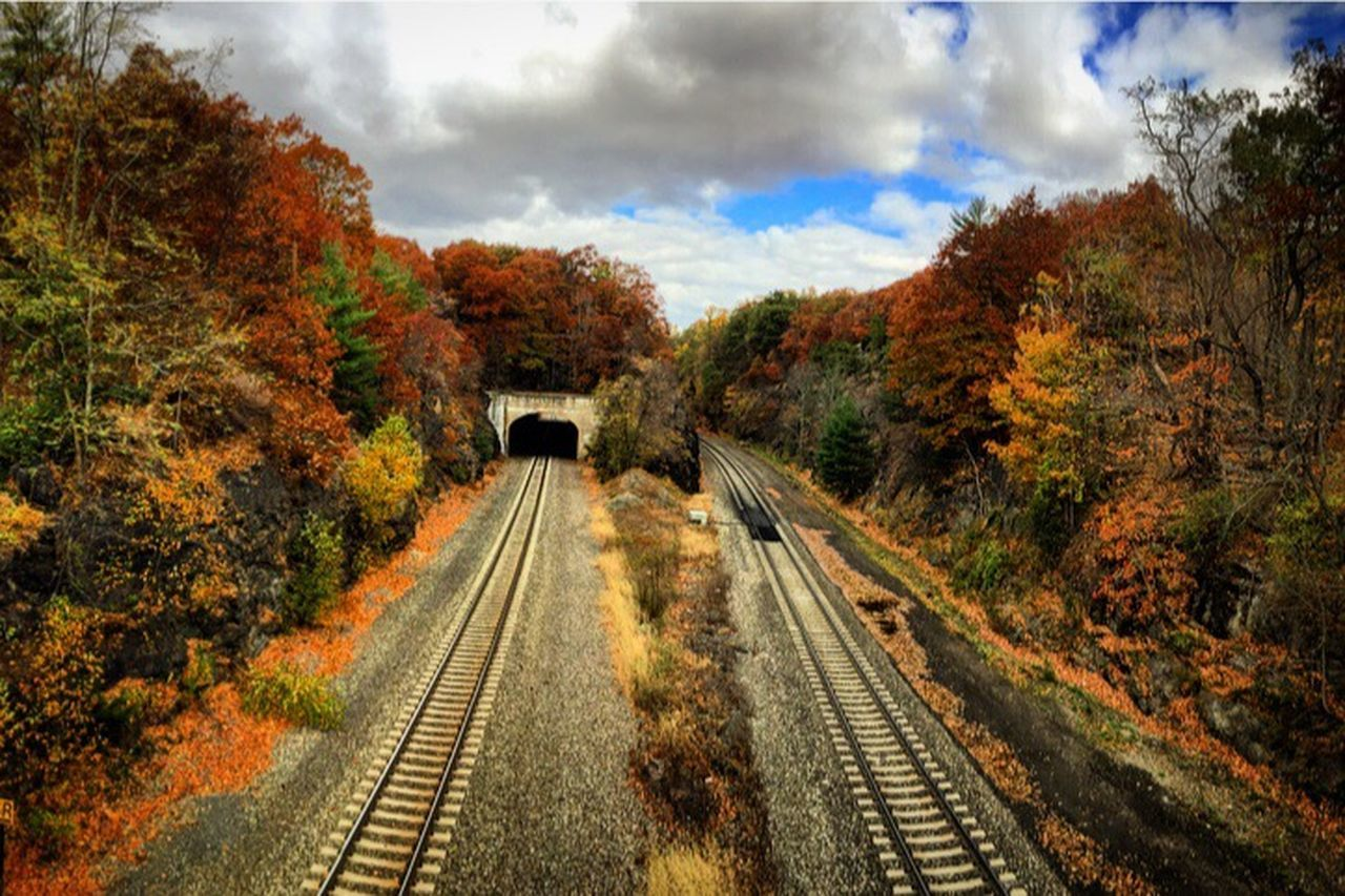 tree, railroad track, autumn, transportation, rail transportation, cloud - sky, outdoors, no people, day, sky, landscape, scenics, nature, beauty in nature