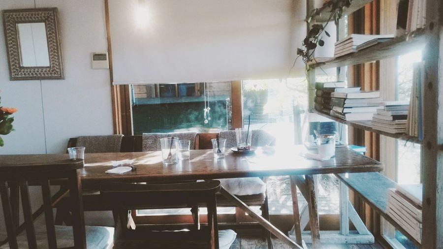 Cafe Table White Cat Cat Book Drink sunlight filters through the trees - the interplay between the light and the leaves 木漏れ日 Komorebi