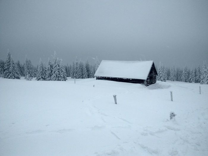 House covered by snow near Sniezka peak Snow Cold Temperature Winter No People White Color Covering Tranquility Beauty In Nature Scenics - Nature Nature Field Land Deep Snow Tree Snowing Day Powder Snow Environment Hanging Out House Czech Republic Building Winter Is Coming