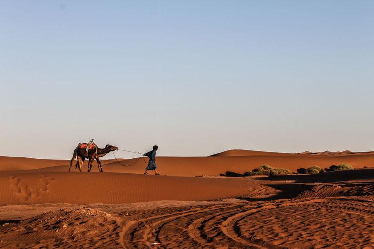 Man In The Desert Against Clear Sky