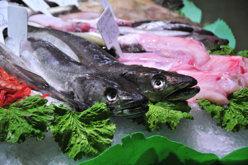 Fish Vertebrate Food Freshness Food And Drink Seafood Animal Close-up No People Healthy Eating For Sale Wellbeing Nature Animal Themes Retail  Raw Food Market Group Of Animals Animal Wildlife Retail Display