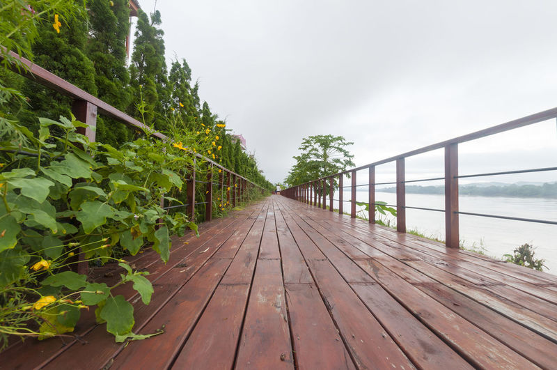 Beauty In Nature Boardwalk Cloud - Sky Day Growth Long Road Long Roads Nature No People Non-urban Scene Outdoors Railing Scenics Sea Sky Surface Level The Way Forward Tranquil Scene Tranquility Water