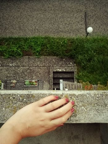 Looking down. Balcony View View From Above Relaxing Rainy Day Layers And Textures Colour Of Life Street Grass Artsy Fartsy Hand Switzerland Eye4photography  EyeEm Gallery Eyeemphotography