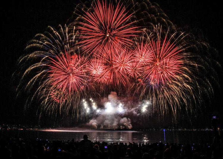 People watching firework display against sky at night
