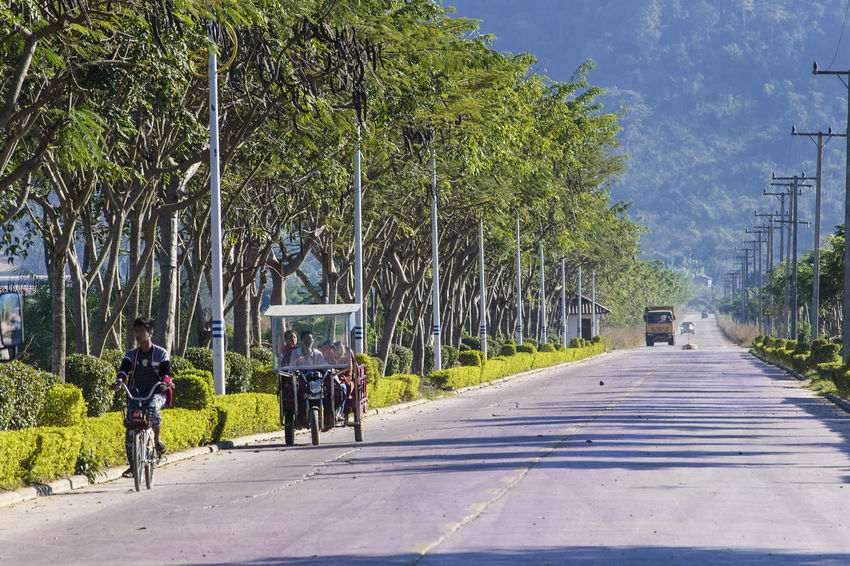 Bicycle Bokeo Day Laos Outdoors Real People Road The Way Forward Transportation Tree