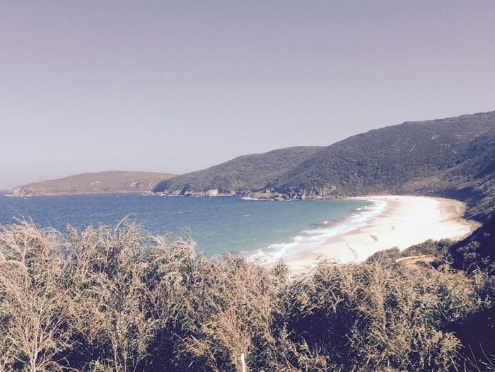 Sea Beach