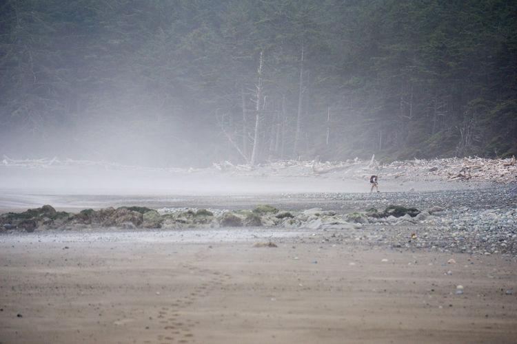 Distance shot of man walking on calm beach