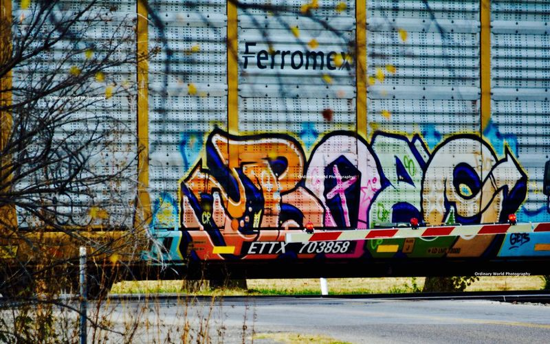 Art On a Train