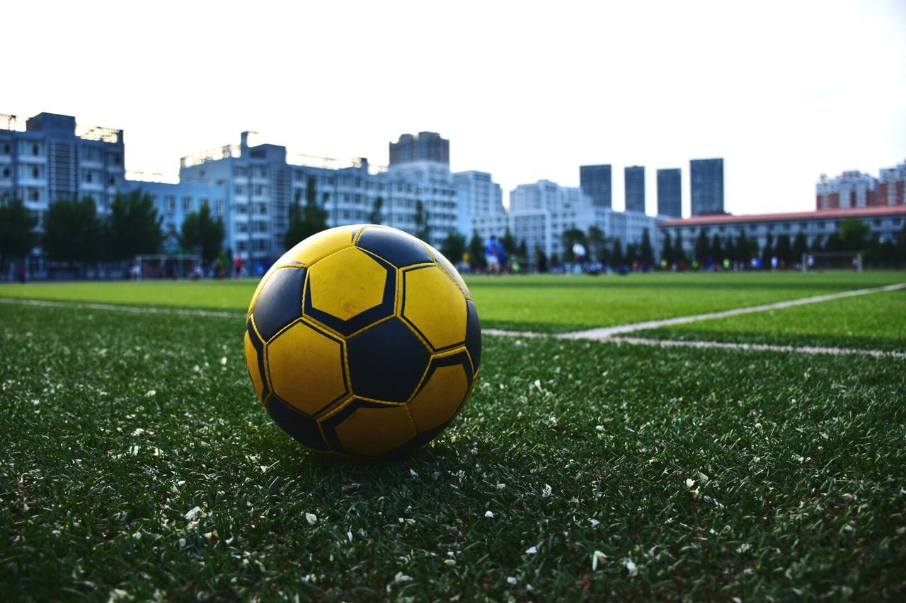 sport, grass, soccer, ball, team sport, soccer field, sports equipment, soccer ball, plant, focus on foreground, nature, architecture, green color, built structure, sky, playing field, building exterior, outdoors, day, field