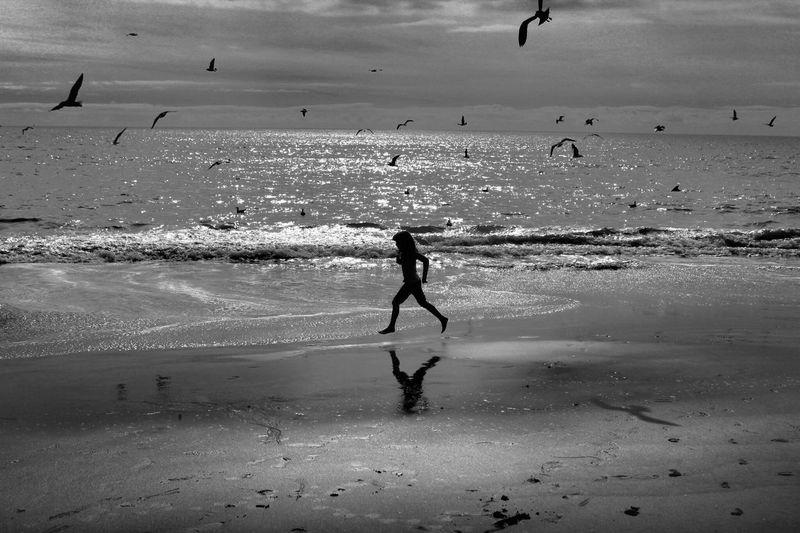Running Free Beach Malibu Blackandwhite Photography Silouette Photography