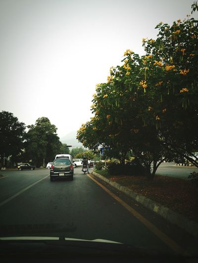 Car Tree Road Outdoors Sky Day City Life Street Islamabad F6 Supermarket First Eyeem Photo