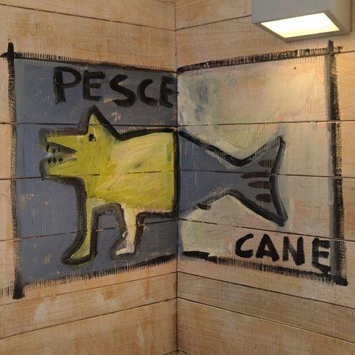 Pescecane = Dogfish :D