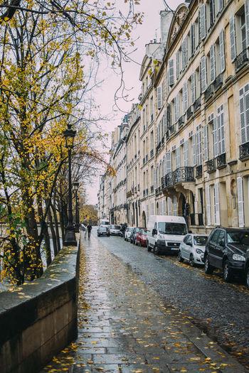 City Paris Building Street Outdoors Building Exterior France Rain Autumn Fall