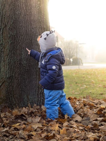 Boy standing in a pile of leaves in front of a tree Autumn Boy Children Portraits Young Child Photography Green Brown Kids Being Kids Kid Childhood Kinder Junge Bookeh Kidsphotography Kids Children Photography Child Leaf Playing Children Leaves Sunset Sunny