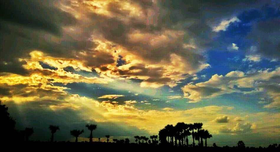 Clouds and sunrays Sunrays_penetrating_clouds Village Life Palm Trees Myamar Nature Photography