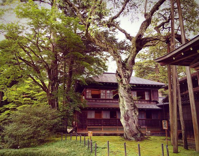 田母沢御用邸 日光 Nikko Building Exterior Architecture Built Structure Tree Travel Destinations 3XSPUnity Japanese Garden Beauty In Nature Hello World Relaxing Lifestyles Enjoying Life Relaxation