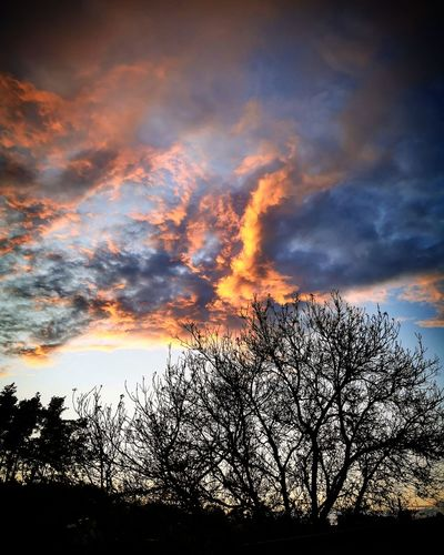 Low angle view of silhouette bare trees against dramatic sky