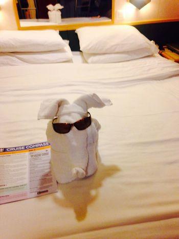 Bahamas Elephant Animal Towel Animal