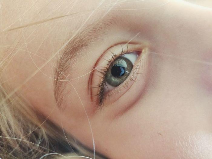 Eyelash Eyeball Eyesight Human Eye Eyebrow Portrait Beauty Iris - Eye Young Women Human Face Hazel Eyes