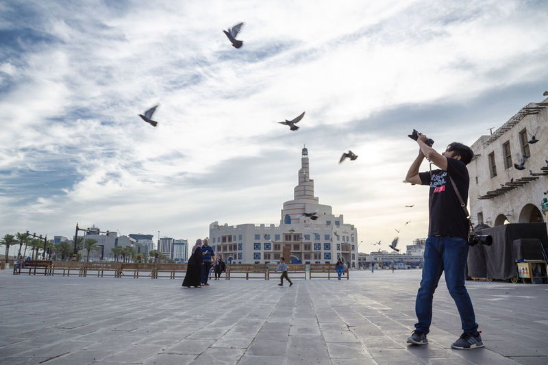View of seagulls flying in city