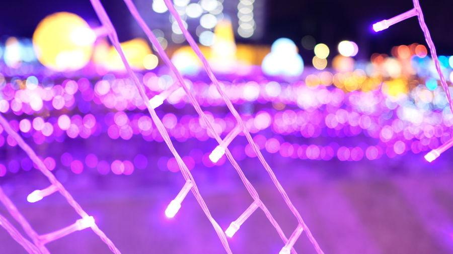 Night Pink Color Close-up Neon Bokeh