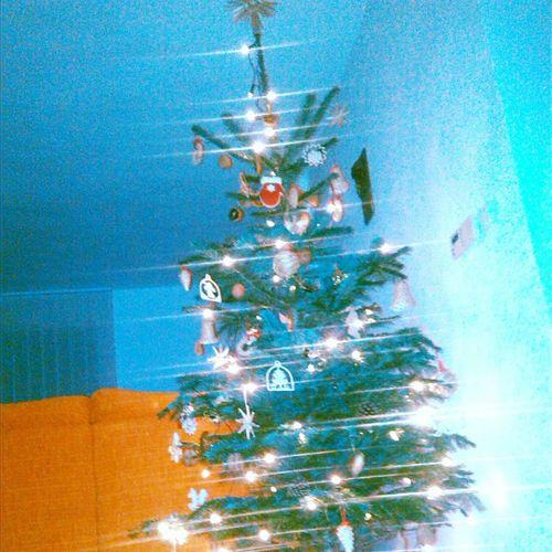 Christmas Tree Traditional Môžu Už Prisť