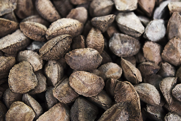 Brazil Nuts Brazil Nuts Nuts Nutrition Healthy Eating Vegetarian Food Brown Snack Delicious Natural Organic Nut Dry Seed Texture Background Background Texture Ingredient Textured  Close-up Abundance Dietary Fiber Magnesium Manganese Phosphorus