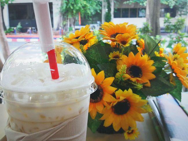 Flower Window Milk Milkshake♥