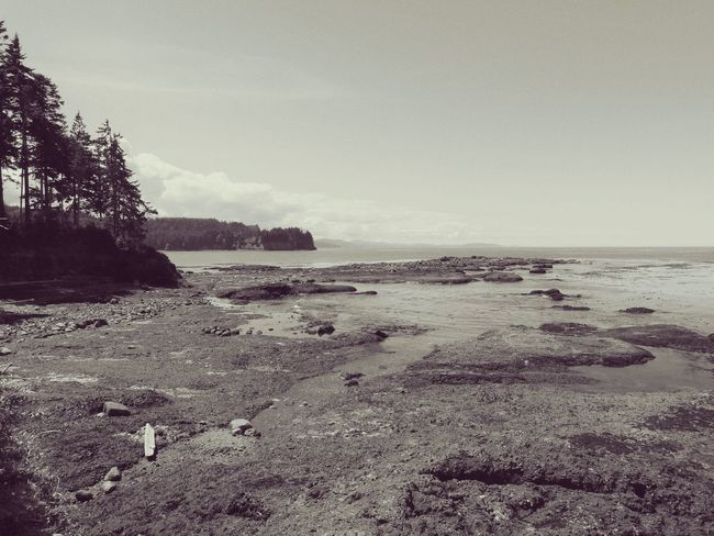Blackandwhite Sepia Seascape Ocean Rocky Coastline Straits Of Juan De Fuca Shipping Lanes Old School Across The Water Beach Beach Photography Beauty In Nature