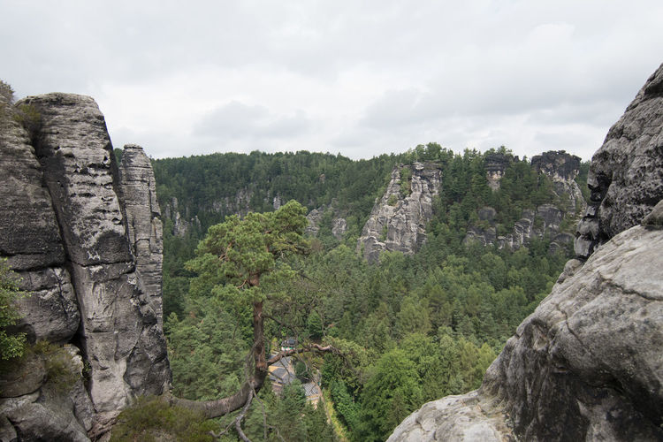 A must-see when being in the region - Die Bastei -the bastion- and the surrounding sandstone needles Beauty In Nature Cliff Cloud - Sky Day Geology Landscape Nature No People Outdoors Rock - Object Rock Formation Scenics Sky Tranquil Scene Tranquility Tree