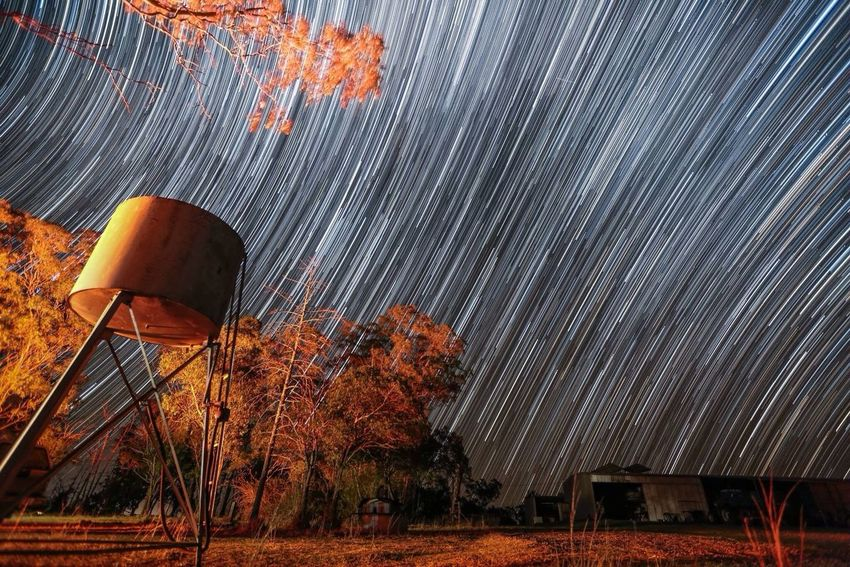 Look Up And Thrive Winter Night Sky Star Trails Landscape_Collection