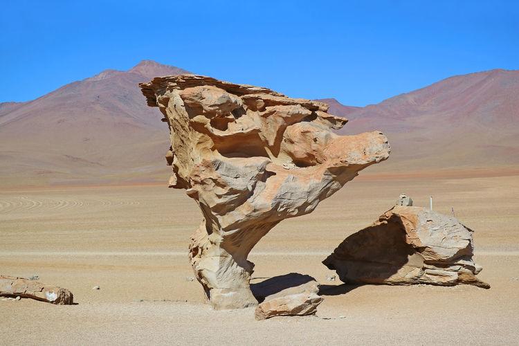 Stone Tree or