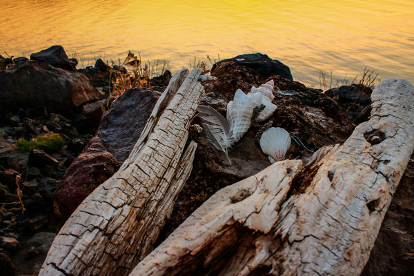 Jemmas Sea Lake Shastina C.a Diamond Mafia Photography Water Northern California Vibrant Colors Lake