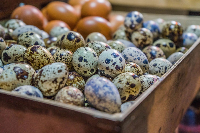 Close-up of quail eggs in container for sale