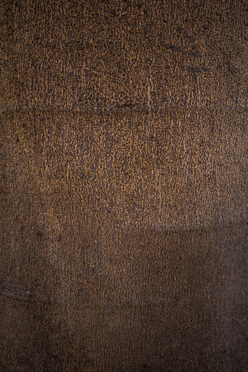 Abstract Backgrounds Blank Book Cover Brown Brown Background Close-up Colored Background Copy Space Dark Dirty Empty Material No People Old-fashioned Pattern Textured  Textured Effect Wallpaper Wood Grain