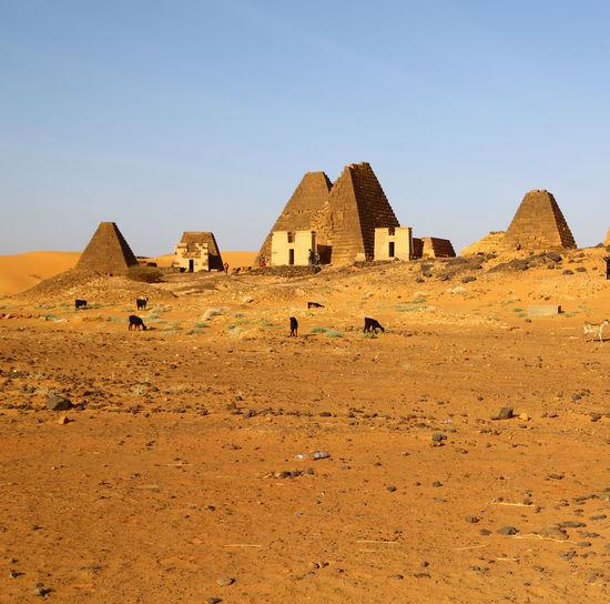 Ruins of a desert