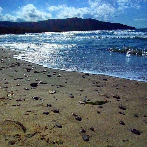 Tunisie Bizerte Plages_de_bizerte Dar_el_janna الموج_الازرق تونس بنزرت شواطئ_بنزرت دار_الجنة نزهة استراحة هدوء طبيعة_خلابة