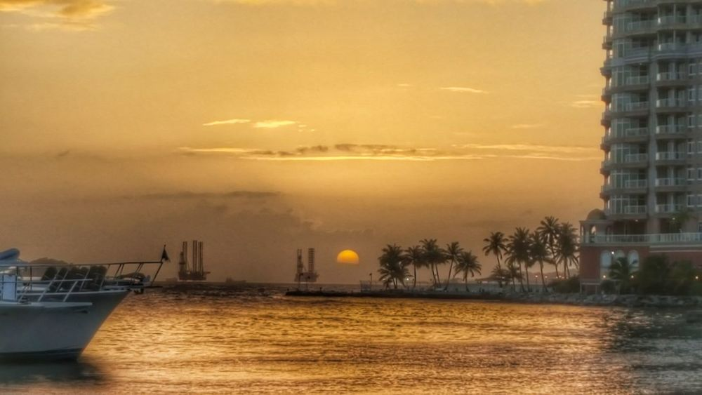 Just At The Right Moment Evening Sun Palm Trees Water Water Reflections Sea Sky Clouds And Sky Moody Sky Setting Sun Setting Sun Over Sea Sunset City Water Outdoors Sky Nautical Vessel Yellow No People Architecture Building Exterior Beauty In Nature Sun