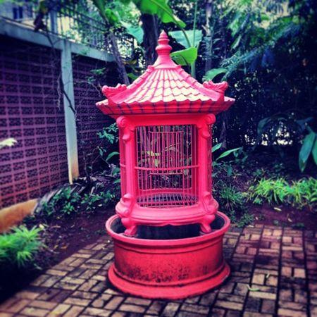 Sangkar Kandang Birdcage