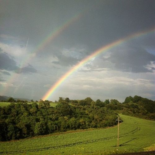 Scotland Rainbow Double Rainbow Beauty In Nature Scenics Idyllic Landscape Nature Tranquil Scene Sky Tree Tranquility Cloud - Sky Outdoors Remote No People Rural Scene Field Multi Colored Growth Grass Travel Destinations Travel