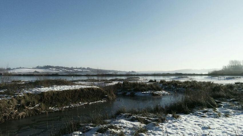 Landscape_Collection Winter Snow Birdwatching EyeEm Nature Lover Horizon