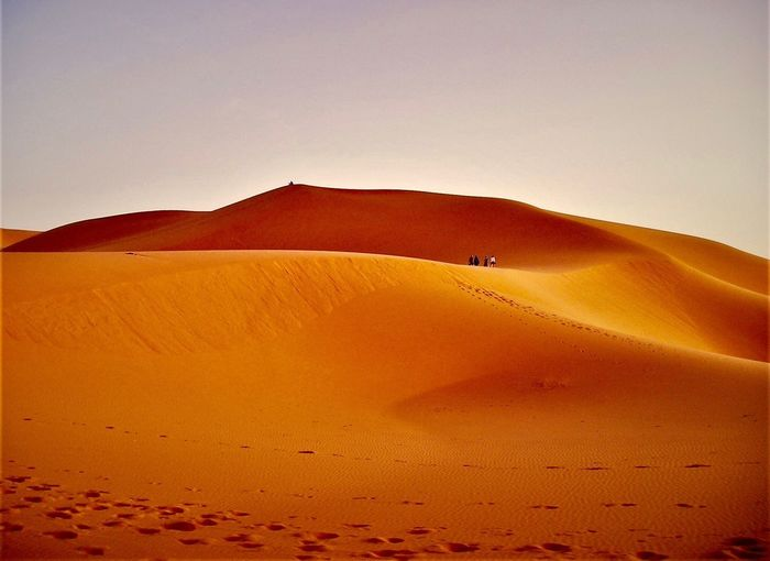 Sahara, Schönheit aus Sand 🕌🐪✨ My Mind Wanders Desert Land Sand Landscape Scenics - Nature Environment My Best Photo Arid Climate Sand Dune Climate Beauty In Nature Tranquility Non-urban Scene Tranquil Scene Nature Clear Sky Outdoors Remote Sky Day Desert Nature Beauty In Nature Tranquility Clear Sky