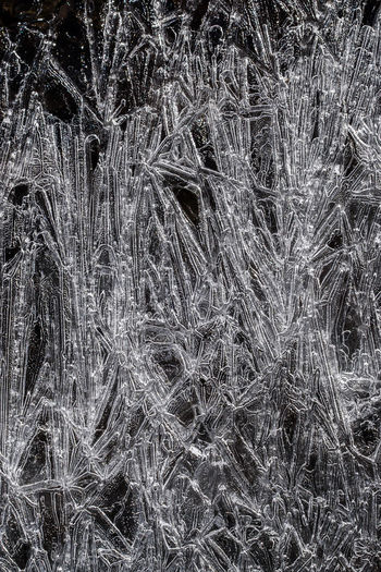 Icescape - Like Grass Backgrounds Beauty In Nature Cheyeesse Close-up Colorado Colorado Photography Cry Day Full Frame Grass Growth Ice Cream Ice Crystals Long Ice Cream Nature No People Outdoors Tree
