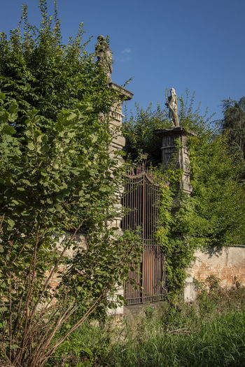 Architecture Barrier Beauty In Nature Boundary Building Building Exterior Built Structure Day Fence Gate Green Color Growth Land Nature No People Outdoors Plant Sky Sunlight Tree