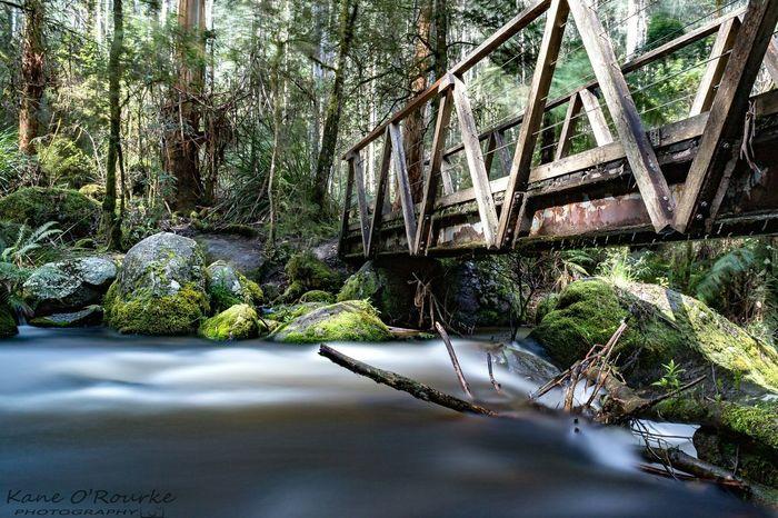 Noojee, Victoria Bridge Photography Aussiephotos MelbournePhotographer Melbourne Noojee Long Exposure Australian Landscape