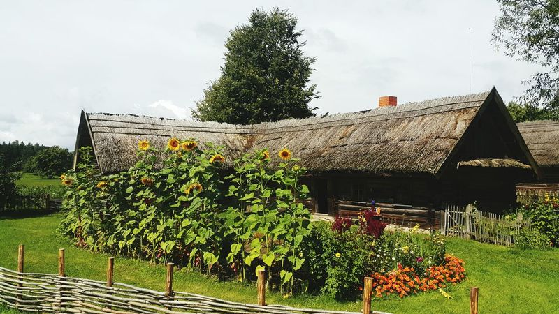 Architecture Lithuania National Park Traditional House Countryside Scene Built Structure Architecture