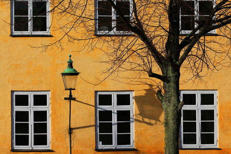 Yellow Facade Apartment Architecture Bare Tree Building Building Exterior Built Structure City Day Electric Lamp Entrance Façade House Lighting Equipment Minimal Nature No People Outdoors Residential District Street Street Light Travel Destinations Tree Window Yellow Yellow Facade